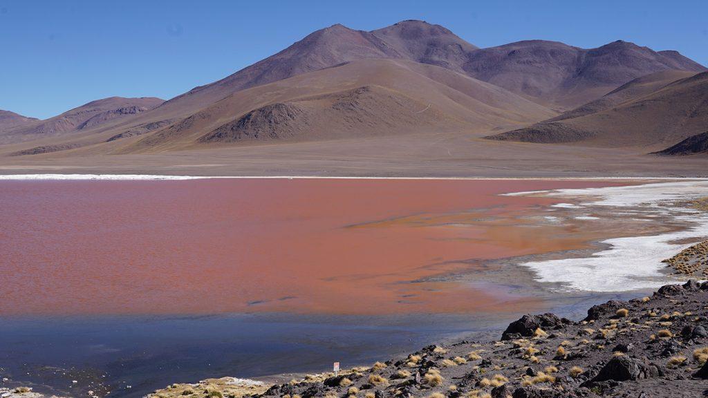 Salar de Uyuni, Laguna Colorada