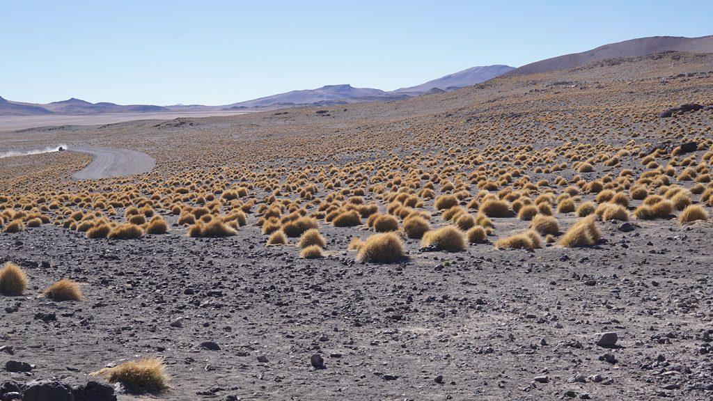 Salar de Uyuni, deserto