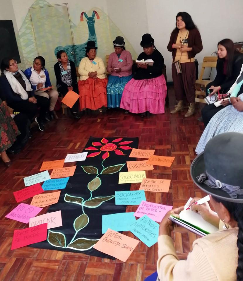 Workshop e iniziative sociali