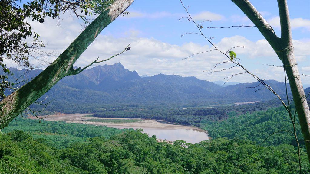 Vista della Selva Amazzonica dal Mirador interno alla foresta