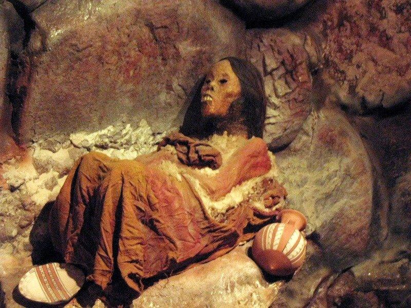 Mummia Januita